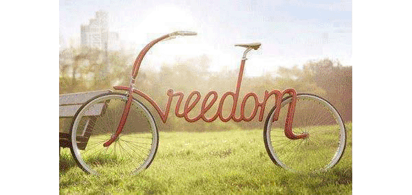 freedom - Scenic Cycle Tours - San Diego Bike Tours
