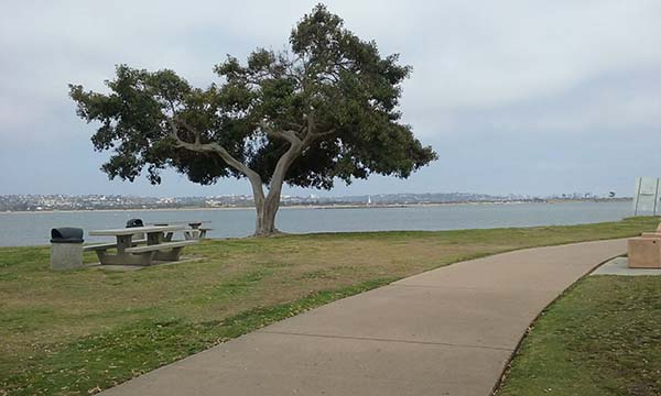 mission beach bike path - Scenic Cycle Tours - San Diego Bike Tours